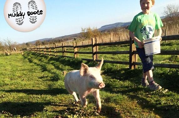 Muddy Boots Farm passes