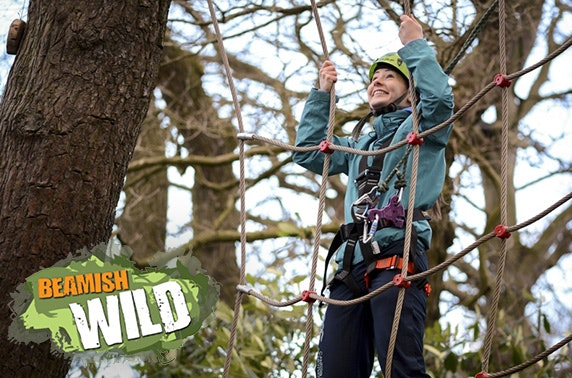 Beamish Wild aerial adventure