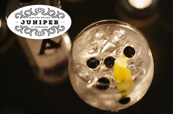 Dinner & drinks at Juniper Scottish Gin Bar, Princes Sq