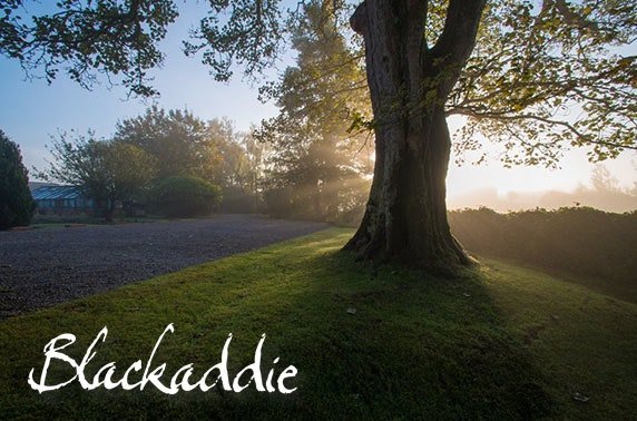 Michelin-recommended Blackaddie Country House Hotel