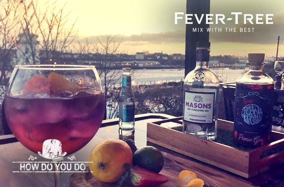 Gin Festival entry & drinks at How Do You Do