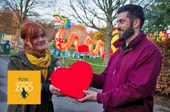 Valentine's at Giant Lanterns of China, Edinburgh Zoo