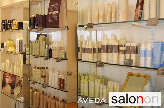 Cut, Aveda conditioning treatment and blow dry, City Centre - £19