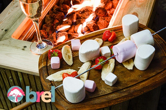 Brel fire pit with marshmallows & drinks