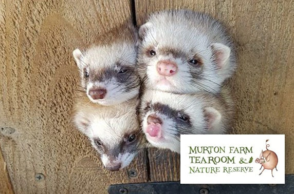 Murton Farm family pass - less than £1.50pp