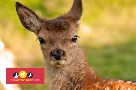 The Scottish Deer Centre passes