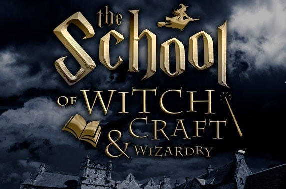 VIP: The School of Witchcraft & Wizardry tickets