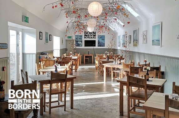 Gin tour & tasting with optional afternoon tea at Born in the Borders