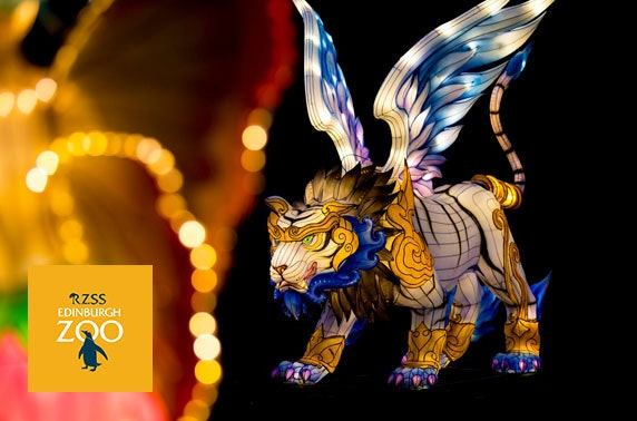 New dates added: Edinburgh Zoo Giant Lanterns spectacular & extra goodies