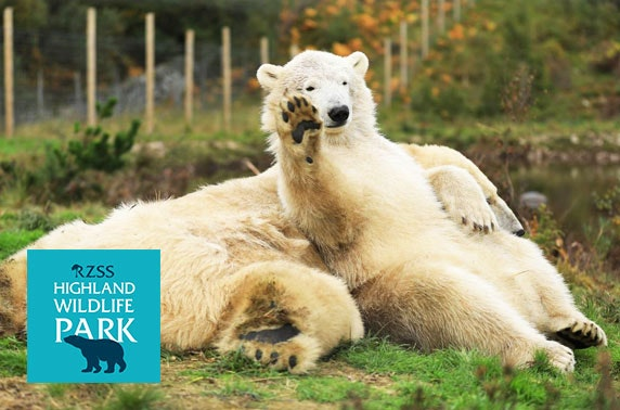Highland Wildlife Park Santa Walk - from £7pp