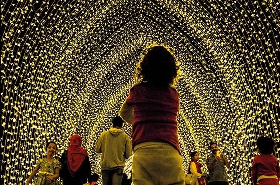 Christmas at the Botanics inc hot chocolate