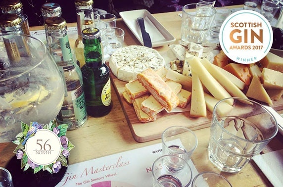 Gin tasting & tour or masterclass with paired cheese