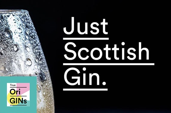 True OriGINs Scottish Gin Festival, Banchory