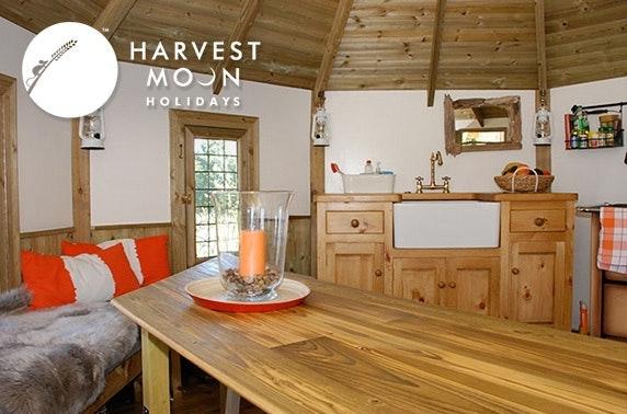 Luxury treehouse stay, East Lothian
