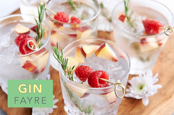 The Gin Fayre at The Salutation Hotel, Perth