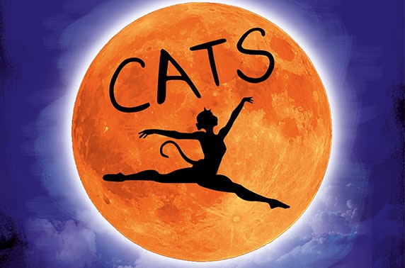 Cats the Musical at the King's Theatre