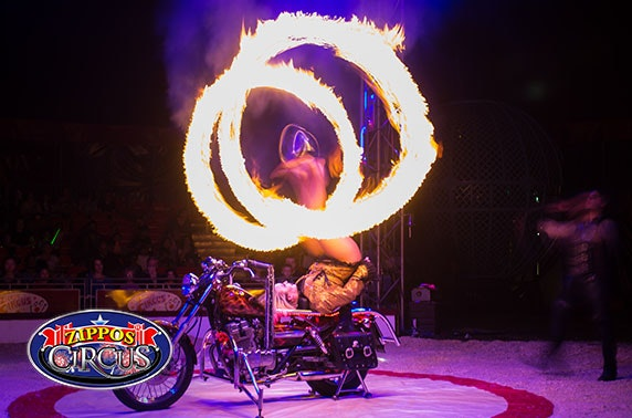Zippo's Circus, choice of 5 locations