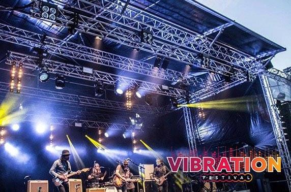 Vibration Festival at Callendar Park