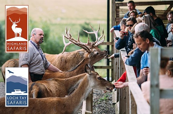 Red Deer Centre & Highland Safari