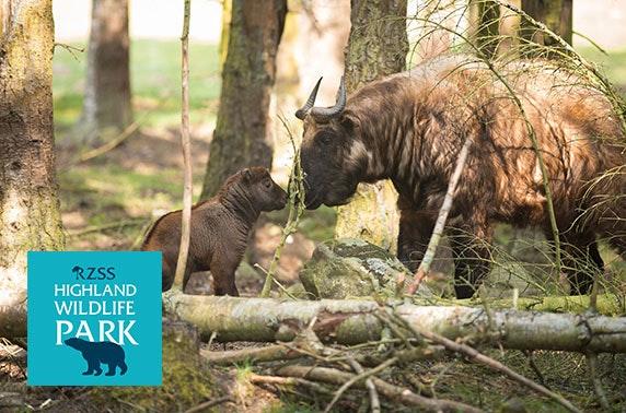 Highland Wildlife Park entry