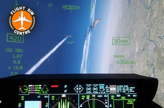 Flight simulation experience – choice of 3 planes