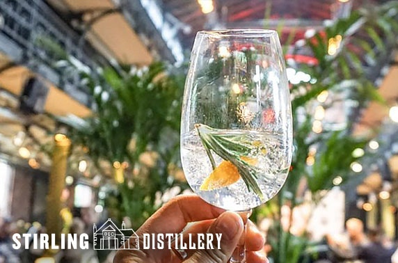 Gin tours and tasting, Stirling Distillery