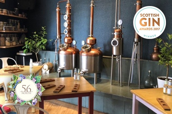 Gin tasting or masterclass at 56 North