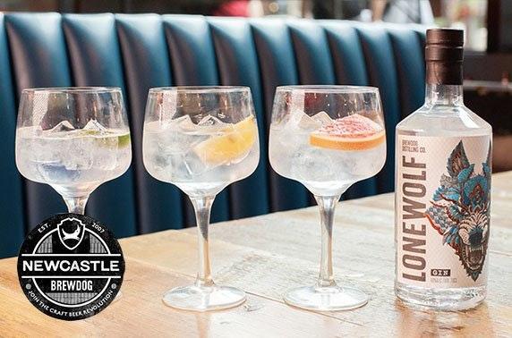 BrewDog Newcastle gin flights & cheeseboard