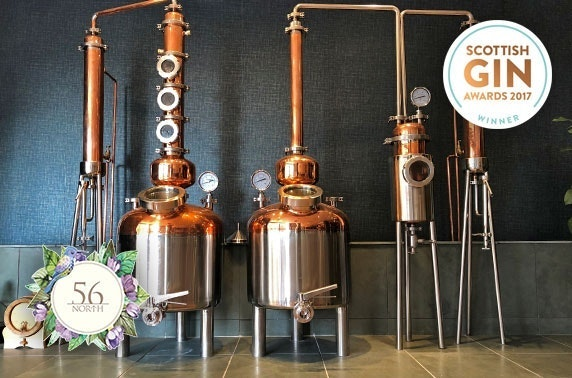 Gin masterclasses at 56 North