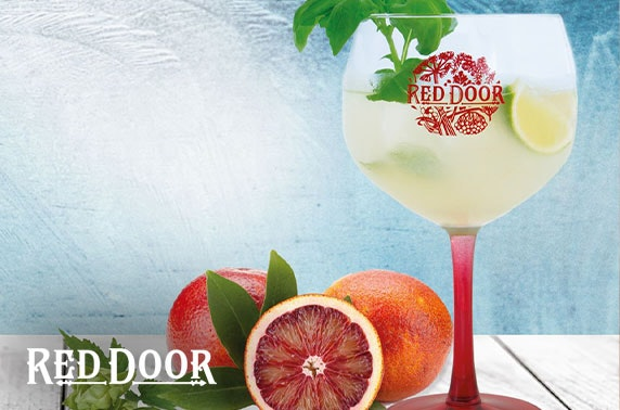 Red Door Gin Experience at Benromach Distillery