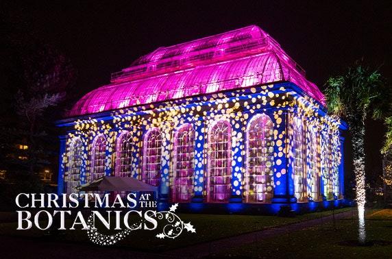 Christmas at the Royal Botanic Gardens